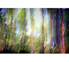 Dancing sunbeams #2 Photographic Print