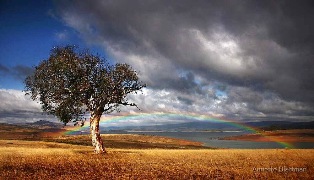 Rainbow's End by Annette Blattman