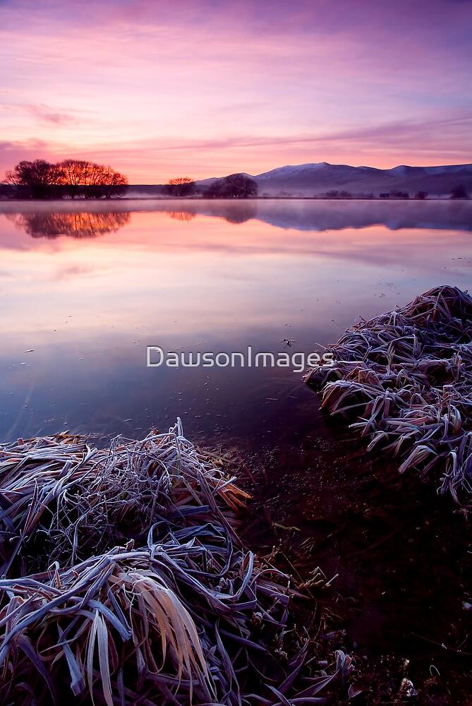Frozen Pastels by DawsonImages