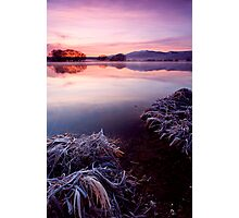 Frozen Pastels Photographic Print
