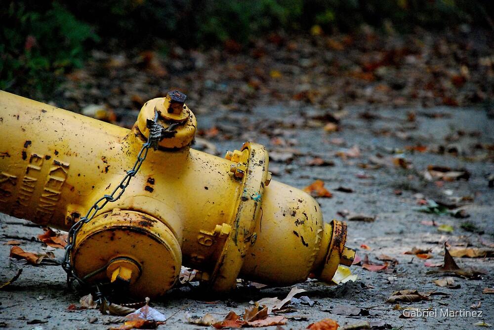 Hydrant by Gabriel Martinez