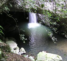 Natural Arch Numinbah Valley Qld by Virginia McGowan