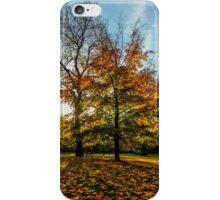 Autumness iPhone Case/Skin