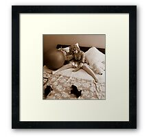 doll 1 Framed Print