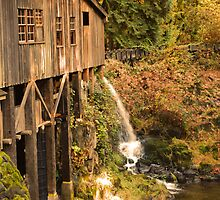 Historic Mill by Heather Parsons