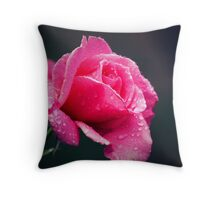 it rained in Wang... Throw Pillow