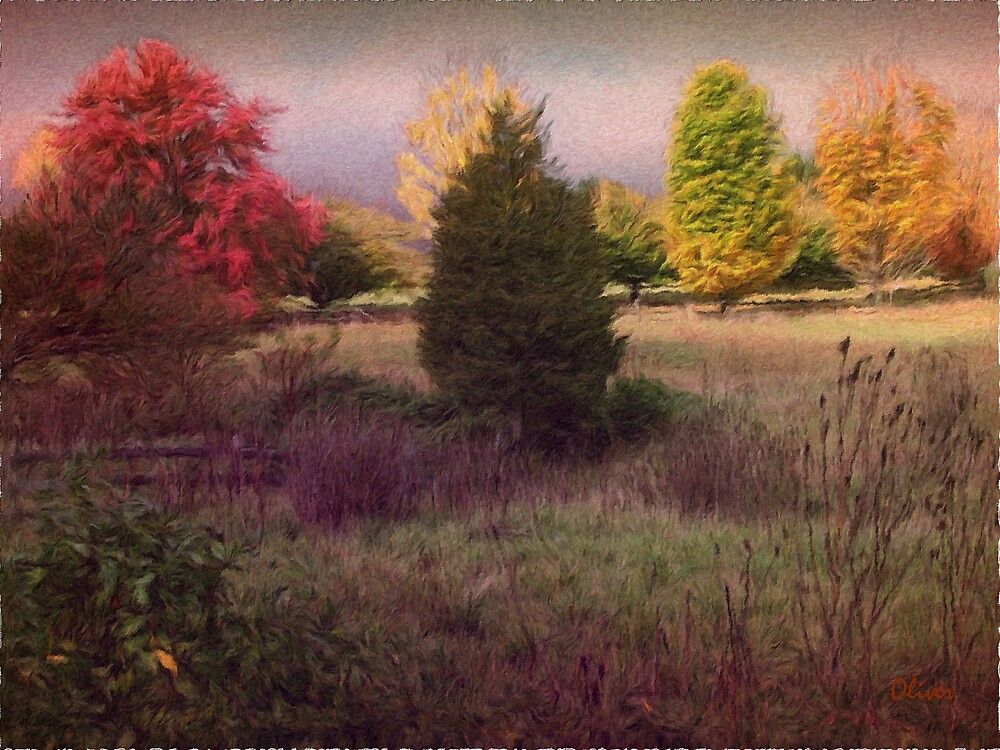 Autumn Hues by Charles Oliver