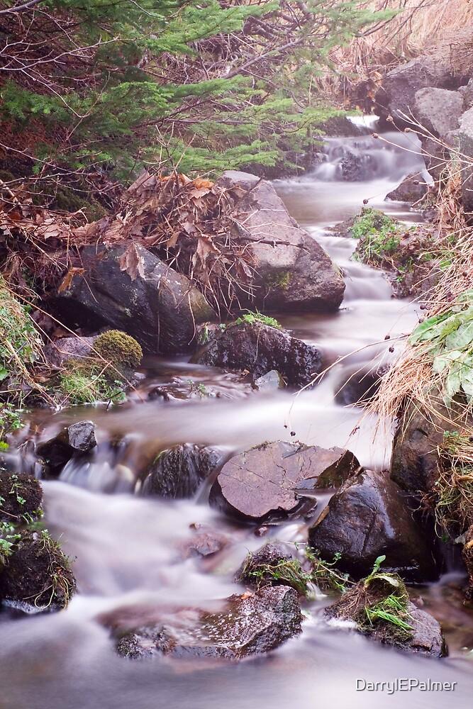 Calming Waters by DarrylEPalmer