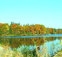 Fall on Cazenovia Lake by Judy Gayle Waller