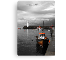 Colour Venture Canvas Print