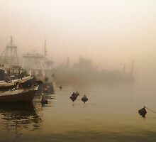 Port of shadows by numgallery