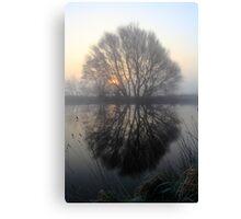 A Pond Reflection Canvas Print