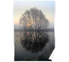A Pond Reflection Poster