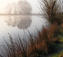 On Golden Pond by Wrayzo