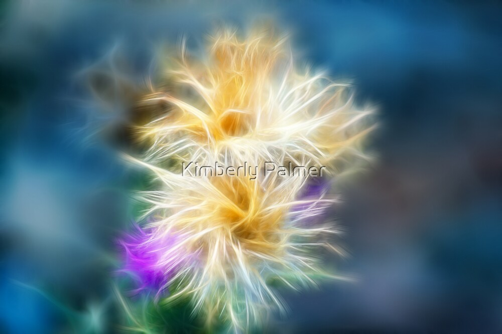 Thistle by Kimberly Palmer