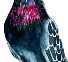Seymour the pigeon Sticker