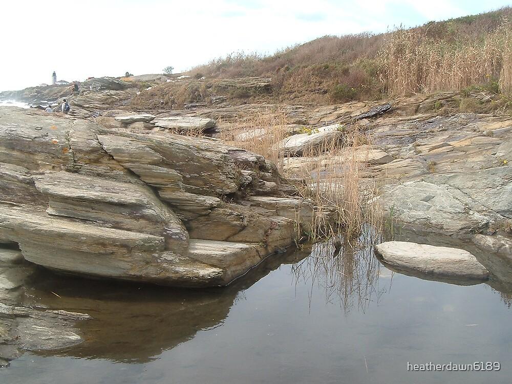 Waterhole by heatherdawn6189