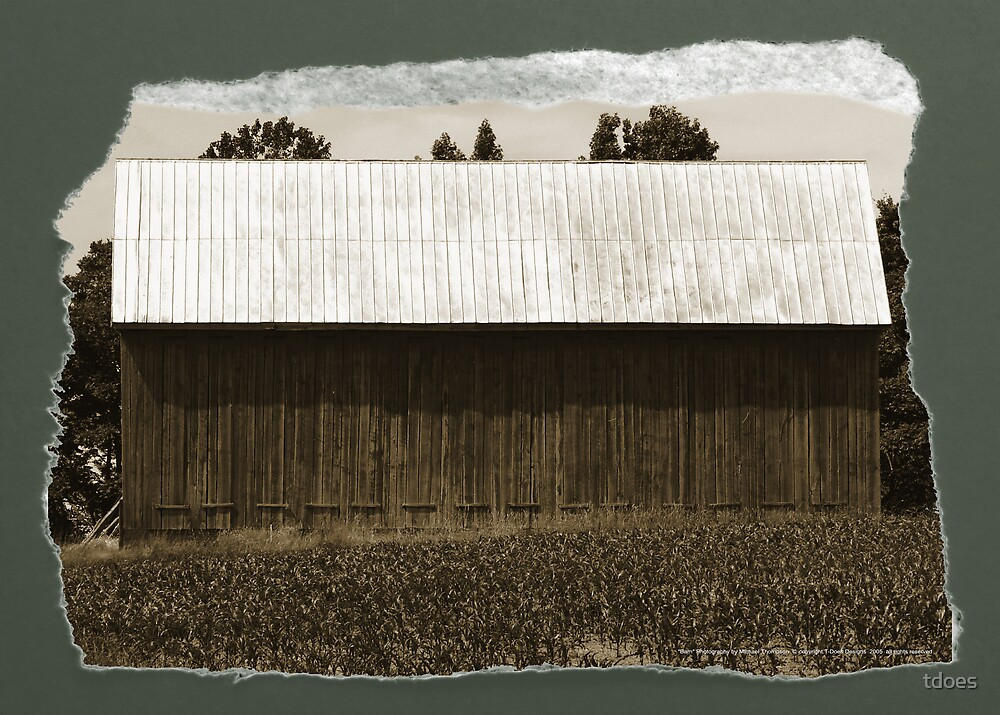 Barn Antique Style by tdoes