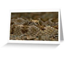 Rattleless Rattlesnake! Greeting Card