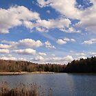 A sunny day at the lake by vigor