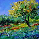 Oak amid flowers in Texas  by calimero