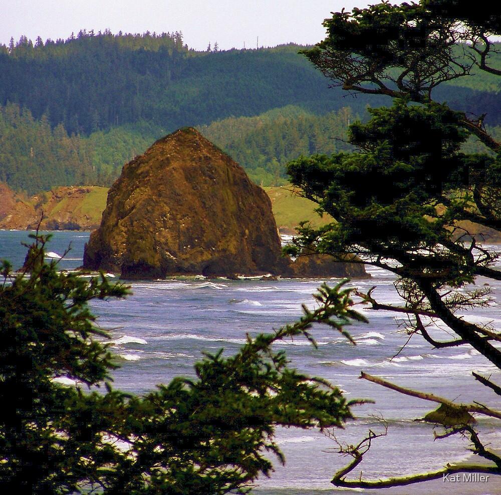Coastal Wonders by Kat Miller