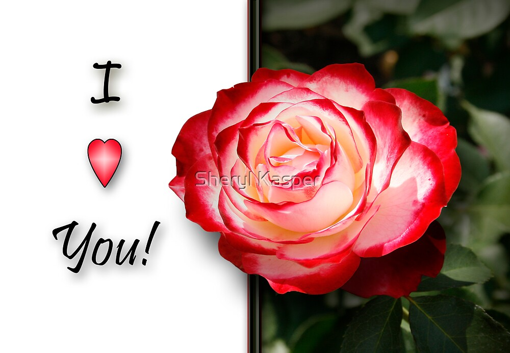 I Love You Card with Rose by Sheryl Kasper