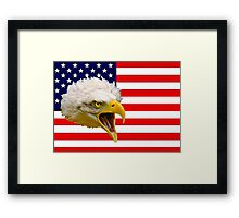 Flag and Eagle 3 Framed Print