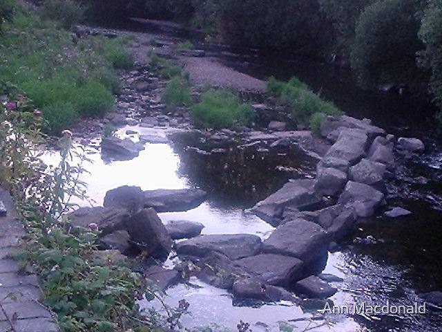 waters edge by Ann Macdonald