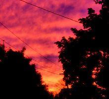 October Sunset by Erika Benoit