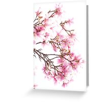 Spring Blossom in England Greeting Card