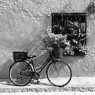 Bicycle and Window by James2001