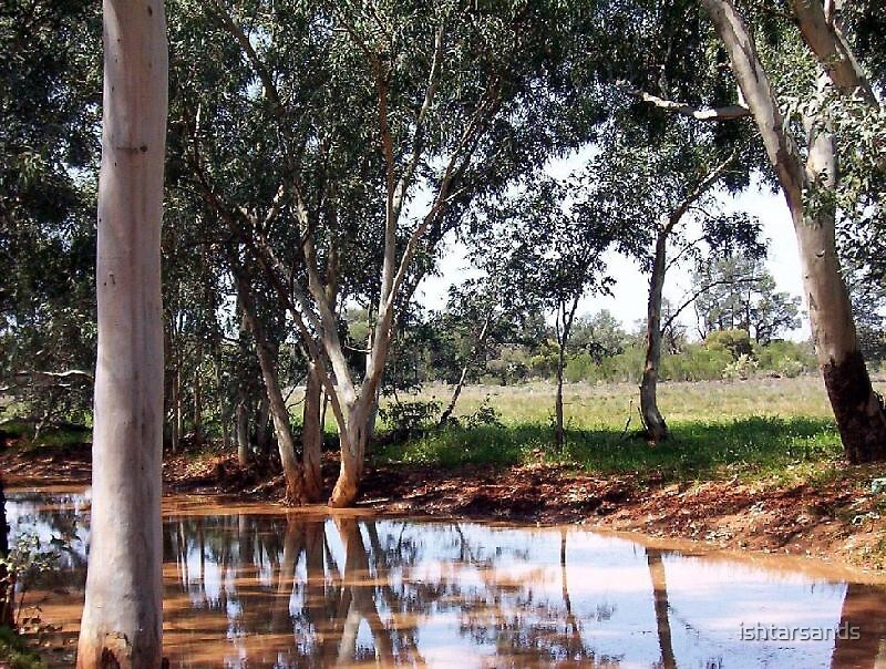 Tranquil river, Bourke area by ishtarsands