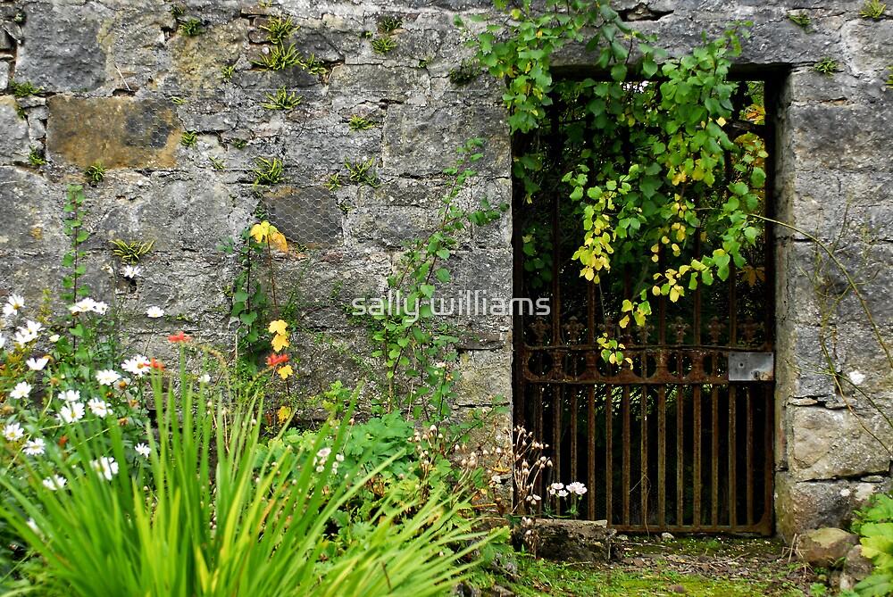 Secret Garden by sally williams