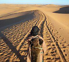 Morocco, 2006 by KBarker