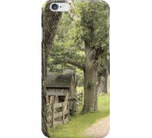 Fence iPhone Case/Skin