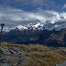 Mount Alfred Marker by Darren Newbery
