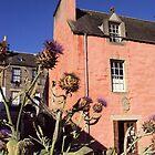 Emblematic Scotland by biddumy
