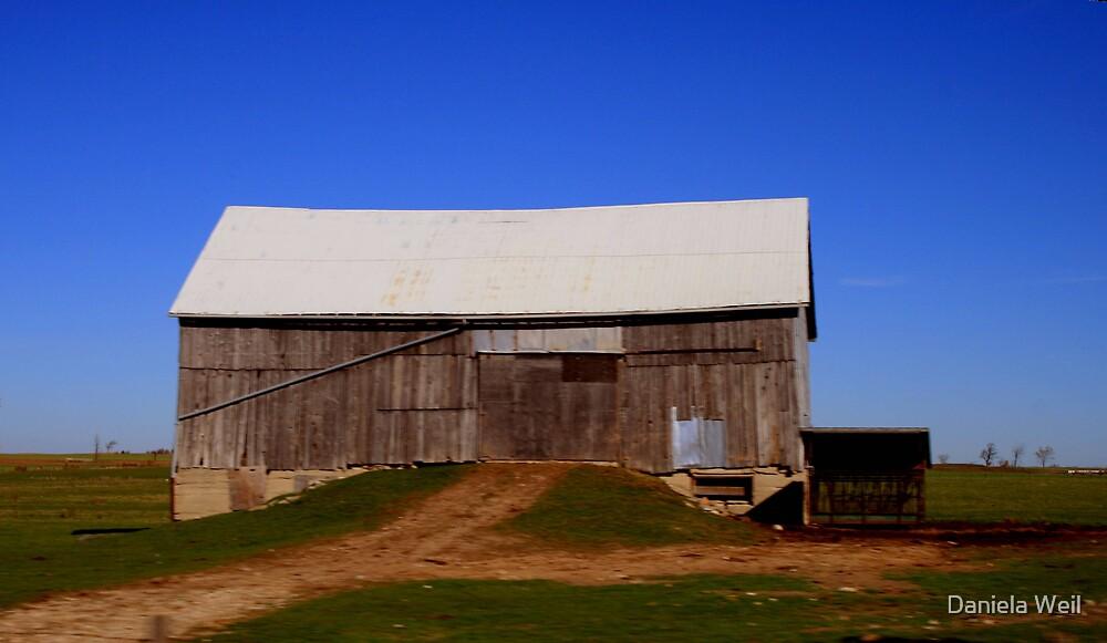 Old barn by Daniela Weil