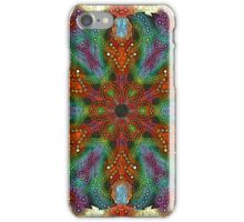 Renaissance Mandala iPhone Case/Skin