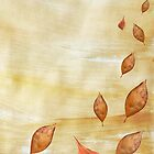 Autumn falling Gold leaves by bardenne