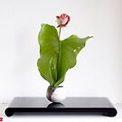 Ikebana-017 by Baiko