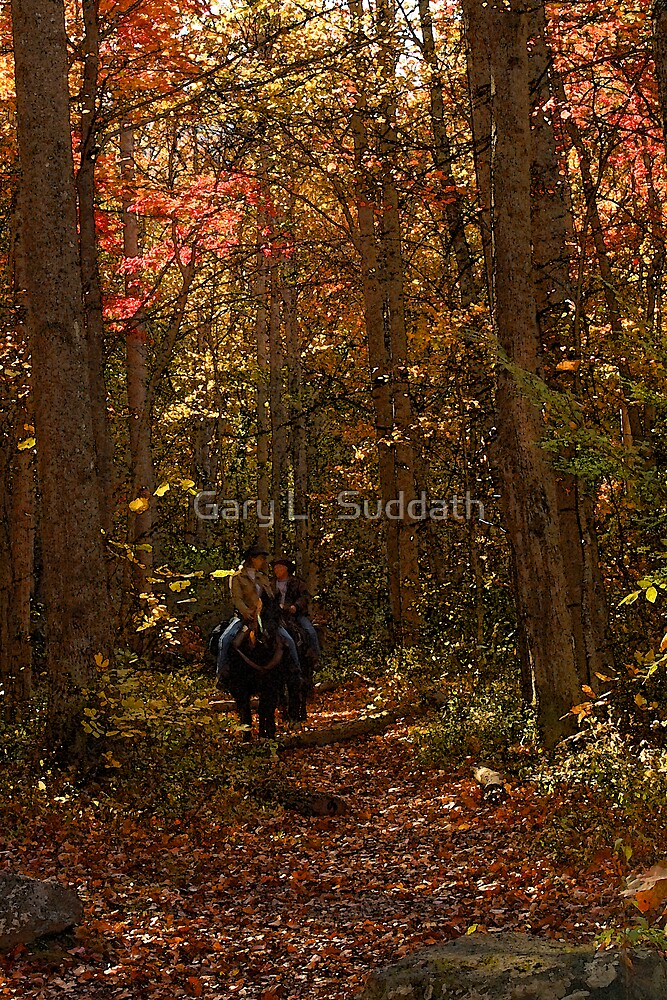 Fall Ride  by Gary L   Suddath
