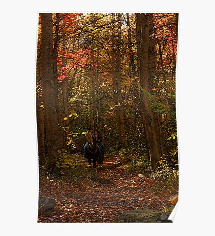 Fall Ride  Poster