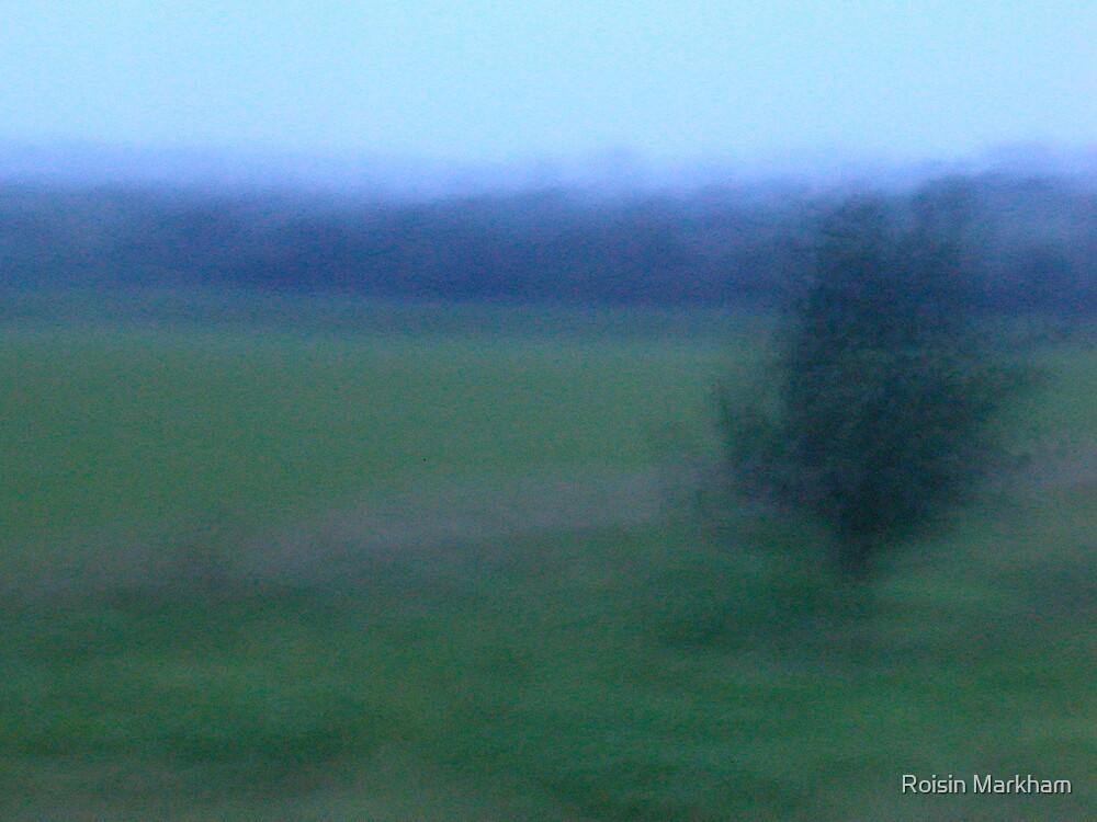 Windy Day by Roisin Markham
