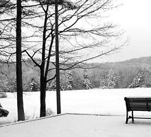 Winter's Beauty by Deborah-Jean McGonigal