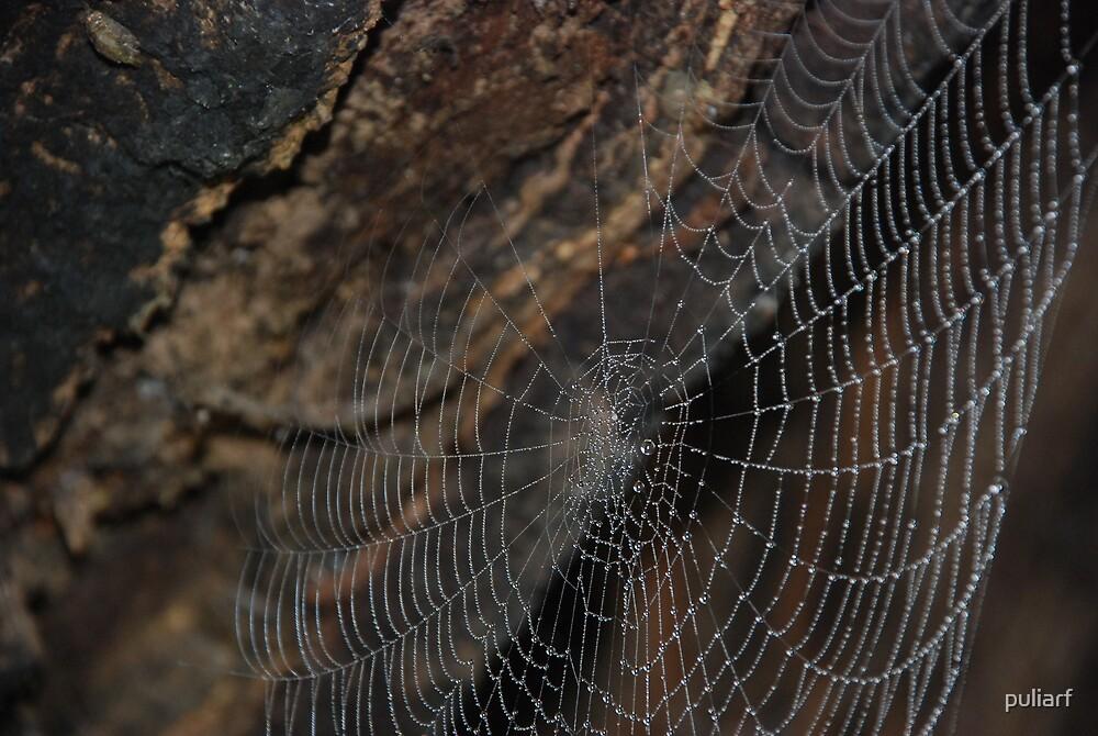 Pecho Web by puliarf