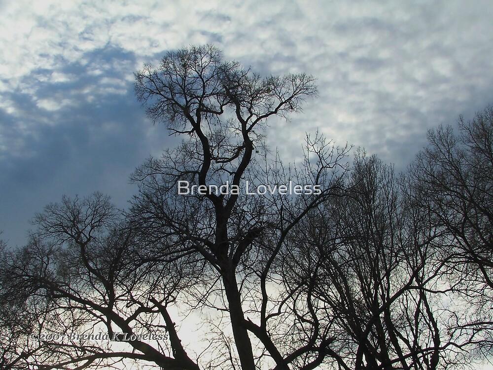 Ft. Worth Sky 4 by Brenda Loveless