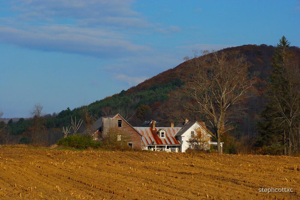 November Farm by stephcottxc