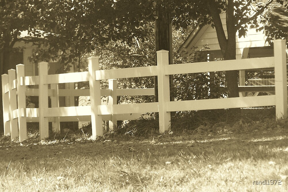 white fence by randi1972